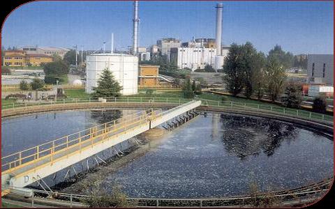 Shemula Water Purification